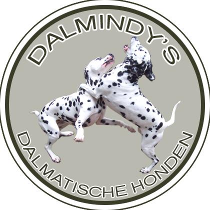 Dalmindys